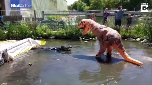 Dinosaur wants to play with crocodiles, Friendly dinosaurs, cute crocodiles, funny animals