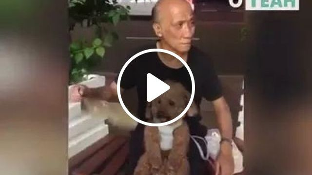 Grandfather And Grandson - Video & GIFs   dog, puppy, adorable