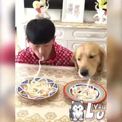 a man and dog eat noodles faster in living room