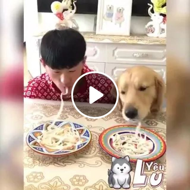 A Man And Dog Eat Noodles Faster In Living Room - Video & GIFs   Cute man, fashion clothes, dog breeds, living room, luxurious furniture