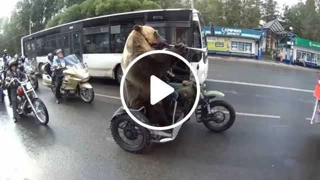 Man and bear with sports motorcycle on russian street