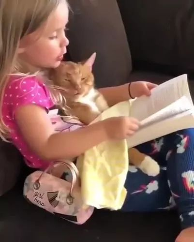 cat is listening to child reading fairy tales in living room