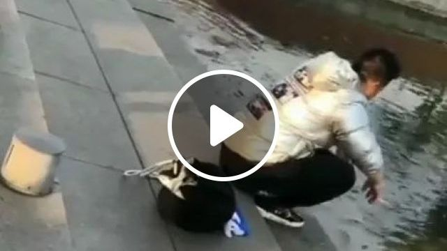 Catching A Fish For A Hungry Cat - Video & GIFs | Smart cat, ornamental fish, friendly man, men's fashion clothes, fashion shoes