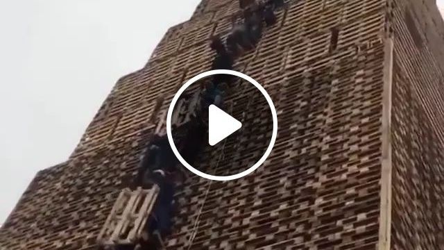 Workers Together Move Wood Up High - Video & GIFs | Protective clothing, hardworking workers, export wood