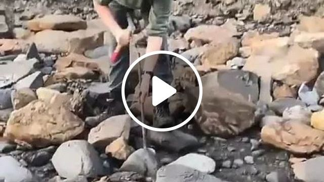 Archaeologists Search In Stone Of Fossilized Fragments - Video & GIFs | Archaeologists, stone, fossil pieces, research