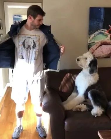 In living room, dog is very happy to see his owner wearing a dog print shirt