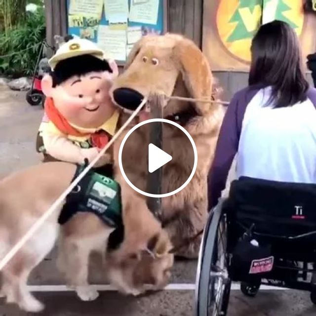 dog is very happy to meet characters in cartoon