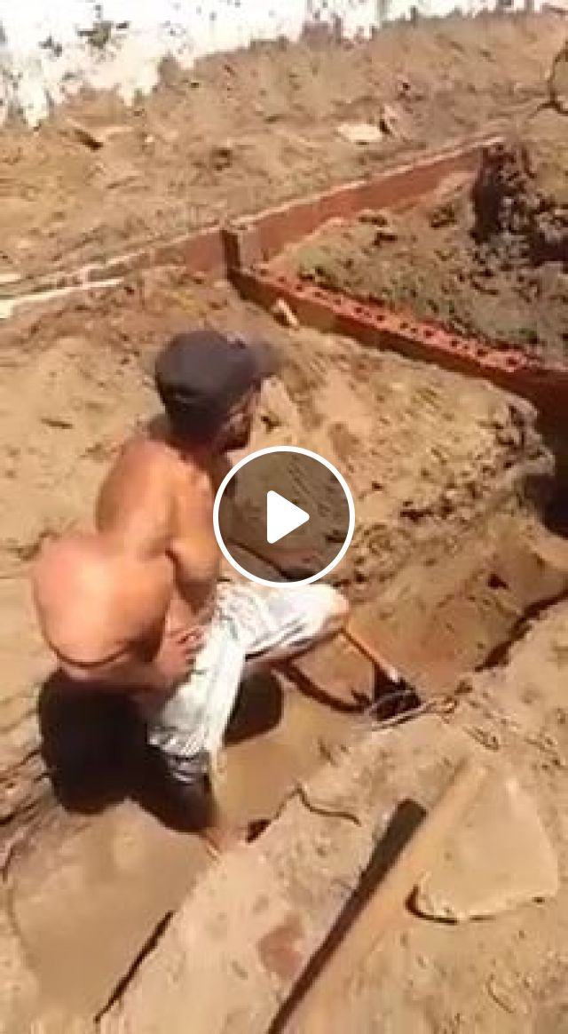 Popeye Is Real - Video & GIFs | Healthy man, muscular strength, agricultural tools