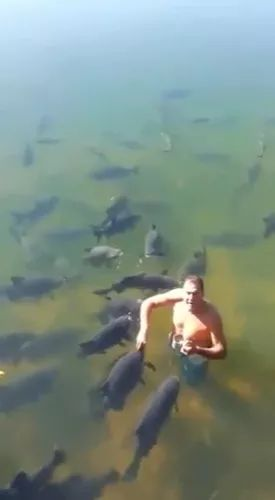 Man with fish in lake in Russia