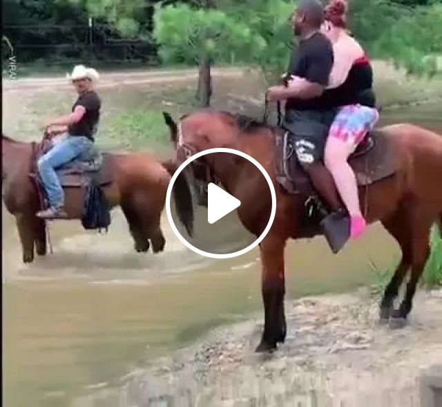 No,no..Finally Getting That Weight Off Your Shoulders. - Video & GIFs | cute horses, american travel, fashionable clothes