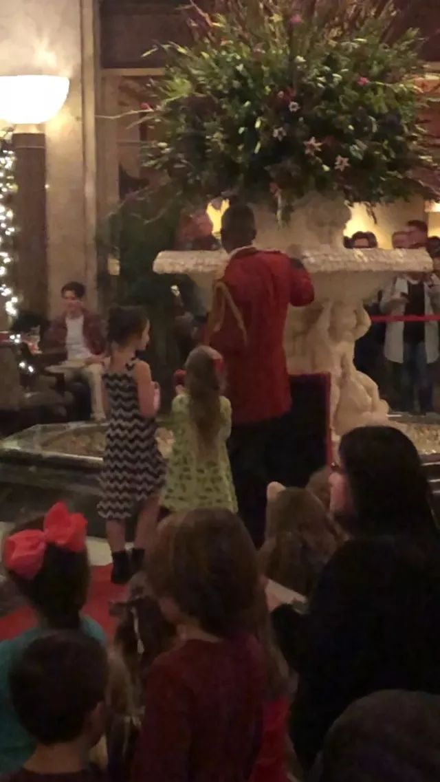 America travel, At the Peabody Hotel in Memphis, TN, ducks reside in the lobby's fountain. They are trained to be led by a duck master to their rooftop homes. This all started because of a prank around a century ago.
