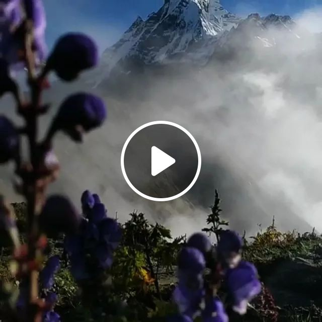 Nepal Travel, This Is The Morning View From Mardi Himal View Point. Macchapuchre On The Background. - Video & GIFs | reddit, travel, this_is_the_morning_view_from_mardi_himal_view