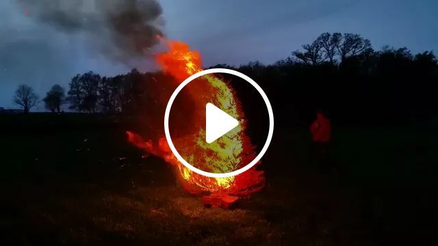 Every year we burn our Christmas tree from the past season (this will be the last time). This tree burnt so bright that my camera made it seem like it was dark out., reddit, damnthatsinteresting, every_year_we_burn_our_christmas_tree_from_the
