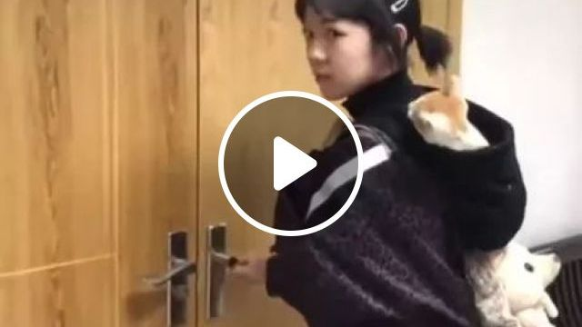 Kitten In Girl's Hat - Video & GIFs | cats, adorable, pets, amimals, hats, girls, fashionable clothes, fashion book bags