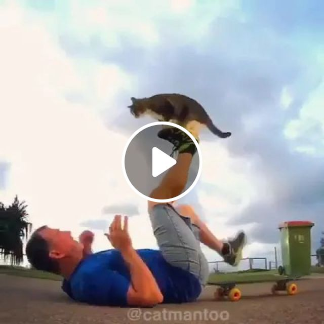 Talented Cat Performs Balancing On The Street With Man - Video & GIFs | cat, talent, performance, balance, skateboard, street, man, fashion clothes, fashion shoes