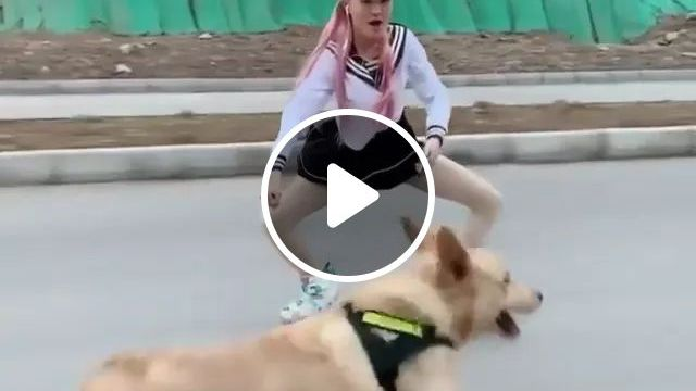 This Roller Skating Girl And Her Dog Along A Pedestrian Walkway - Video & GIFs | girl, performers, skates, dogs, run, follow