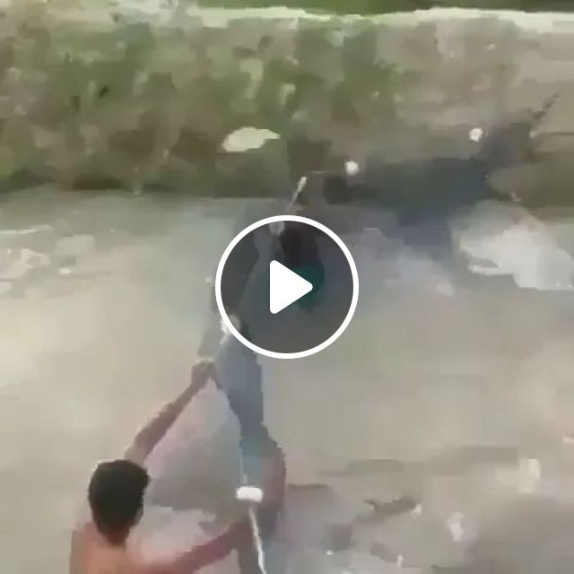There are many fish in river, River fish, fishing gear, fishermen