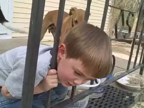 Dad saved his son from iron fence.