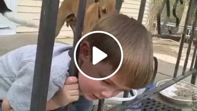 Dad saved his son from iron fence., Smart dad, children's fashion clothes, iron fence.