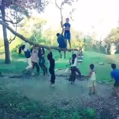 Children play on tree branches
