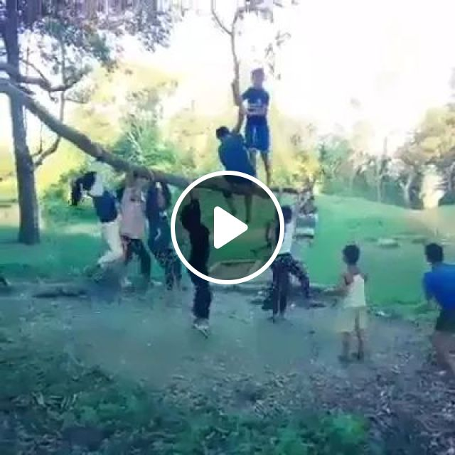Children play on tree branches, children, play, tree branches, children fashion
