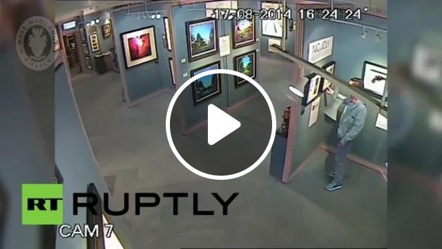 camera recorded a man stealing expensive painting in museum, Camera, video recorder, high definition, thief, art painting, museum