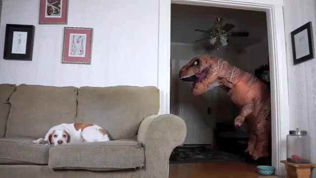 Dinosaur and dog in living room