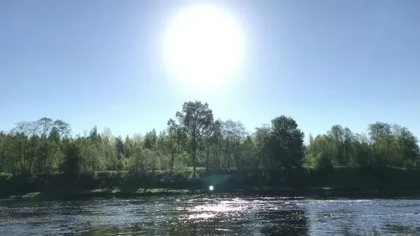 In forest, fresh air, birds singing and flowing river are great for travel - Video & GIFs | In the forest, fresh air, birds singing, rivers, currents, great, Switzerland travel, nature