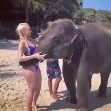 girl is taking care of baby elephant in zoo