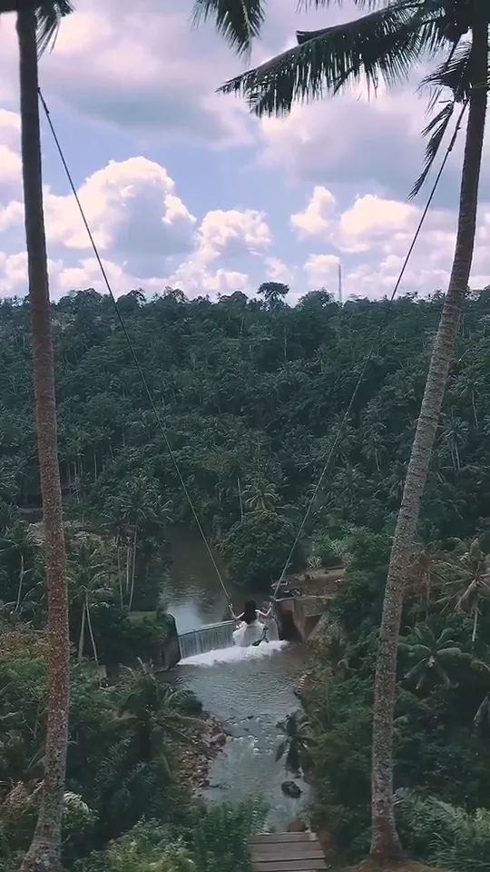 swing on the tall tree is amazing - Video & GIFs | girl, swing, tall, tree, forest, stream, great, nature, bali indonesia travel