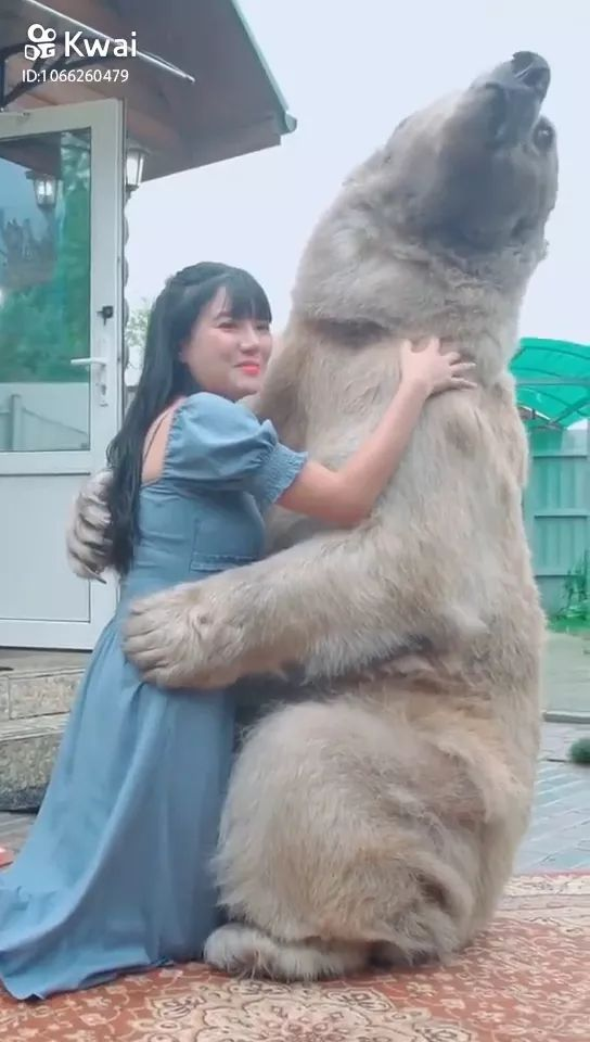 Bears and humans are friends