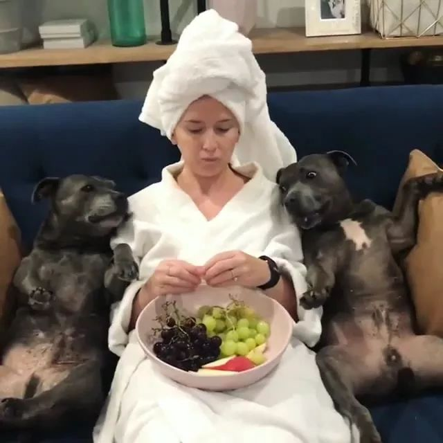 girl and dogs eat fruit, perhaps,vitamins are good for health