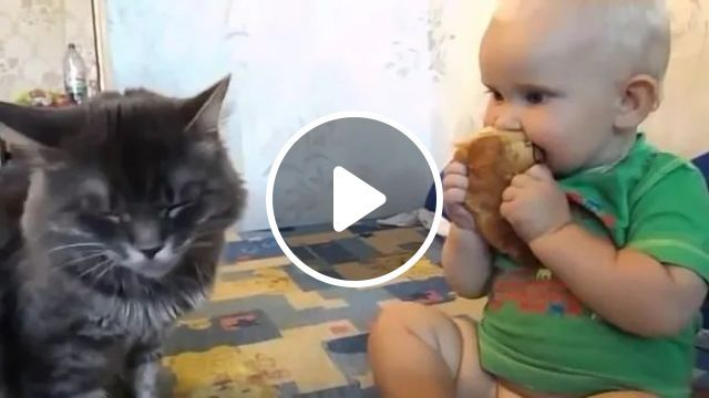 Kitten And Baby Together Eating Cake In Bed - Video & GIFs   Kittens, babies, fashion babies, eating cakes, luxury beds, bedrooms, luxurious furniture