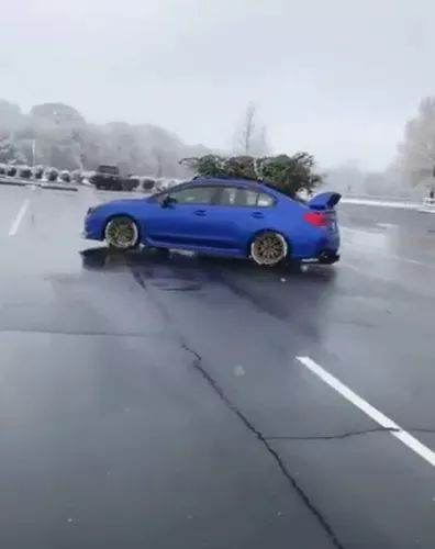 Luxury car carrying a Christmas tree on a smooth road