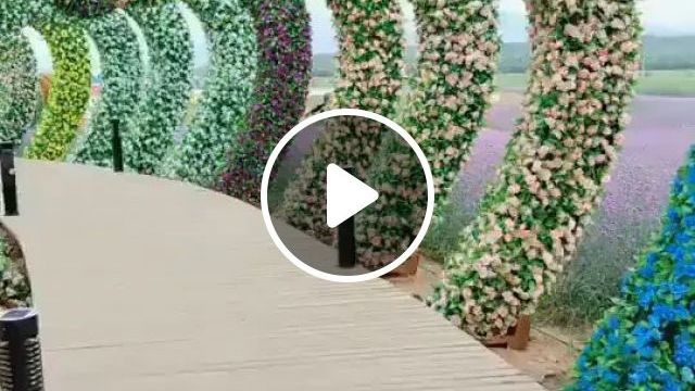 Beautiful Leaf And Flower Road - Video & GIFs   beautiful, leaves, flowers, roads, China travel, tourists, cameras, photography