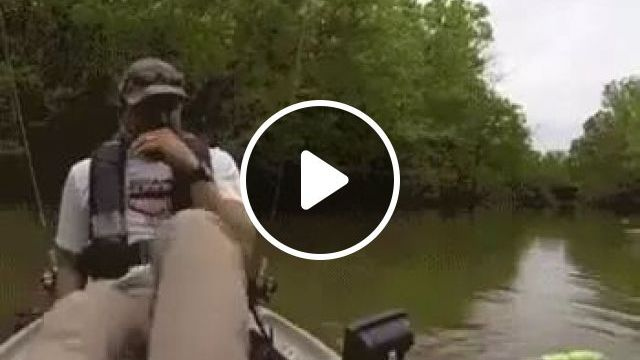a man fishing on the river and saw crocodile, crocodile, fishing, soul, fear, nature, river, boat, park, discovery, American travel