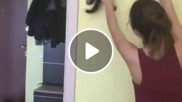 Girl helps kitten to be able to climb up wall, looking like a spiderman, girl, helps, kitten, able, to climb, wall, looking like, spiderman