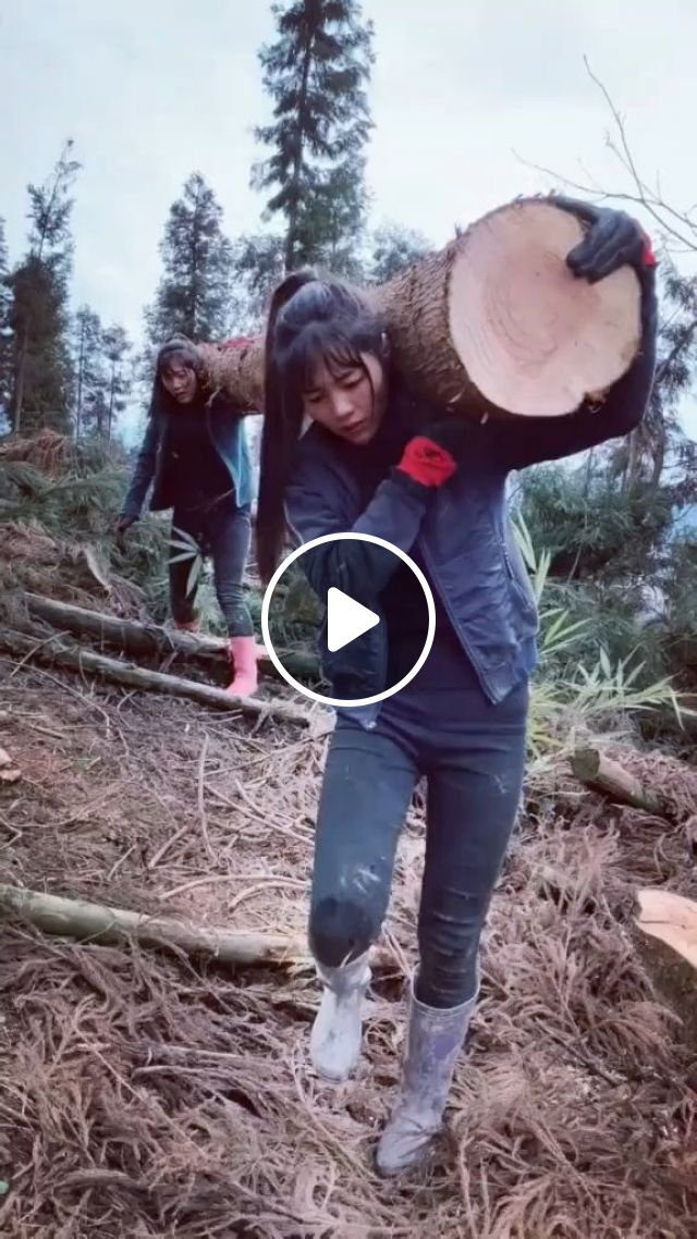 A Hard Working Day - Video & GIFs   protective clothing, wood