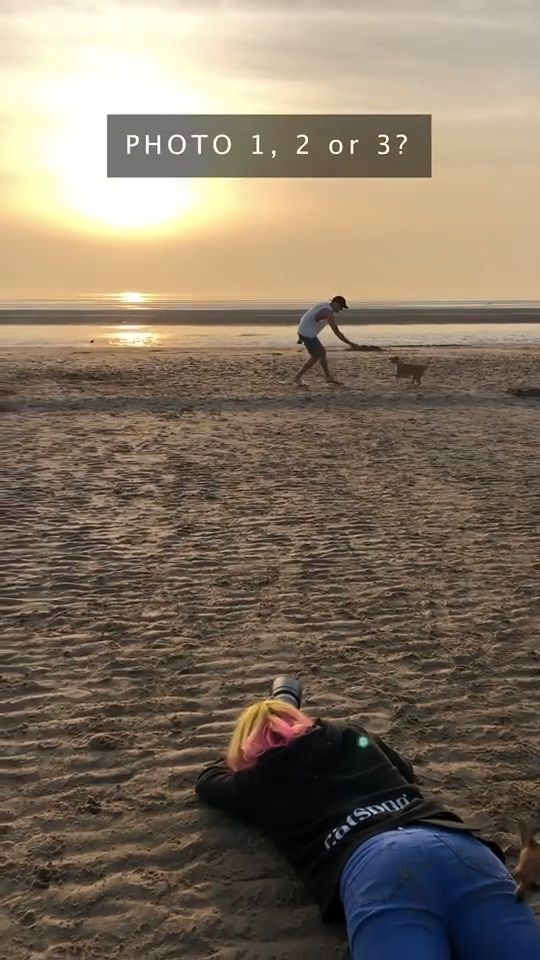Photographing Dogs At The Beach