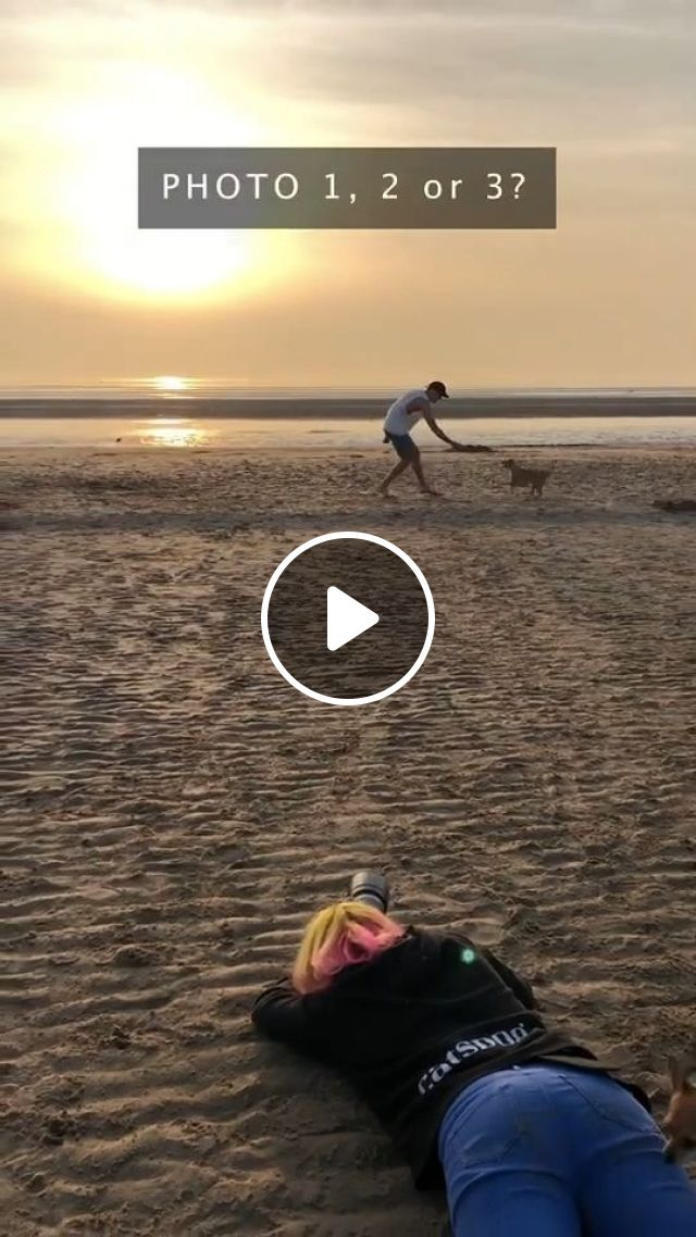 Photographing Dogs At The Beach - Video & GIFs | Pets and Animals, Dogs, Dog Photography