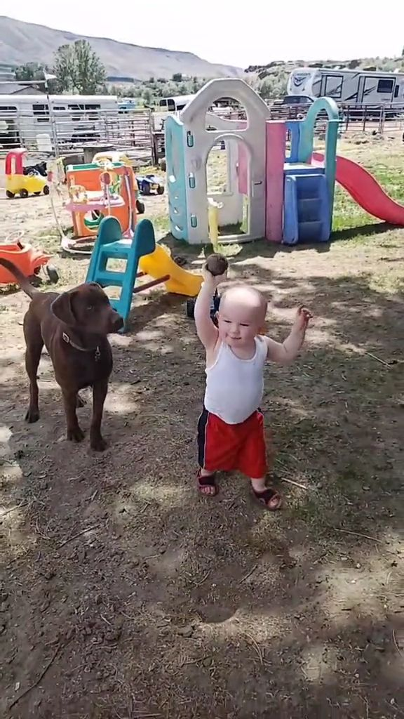 Teach Your Child to Care for Their First Dog