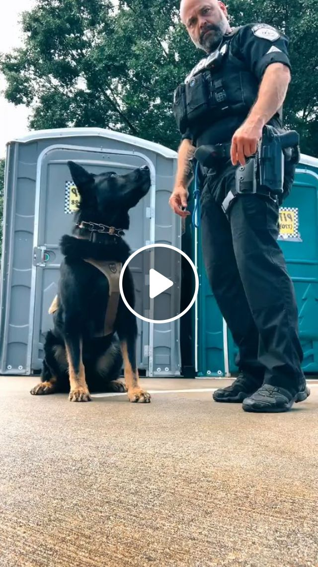 Together Protect America - Video & GIFs | dogs, police