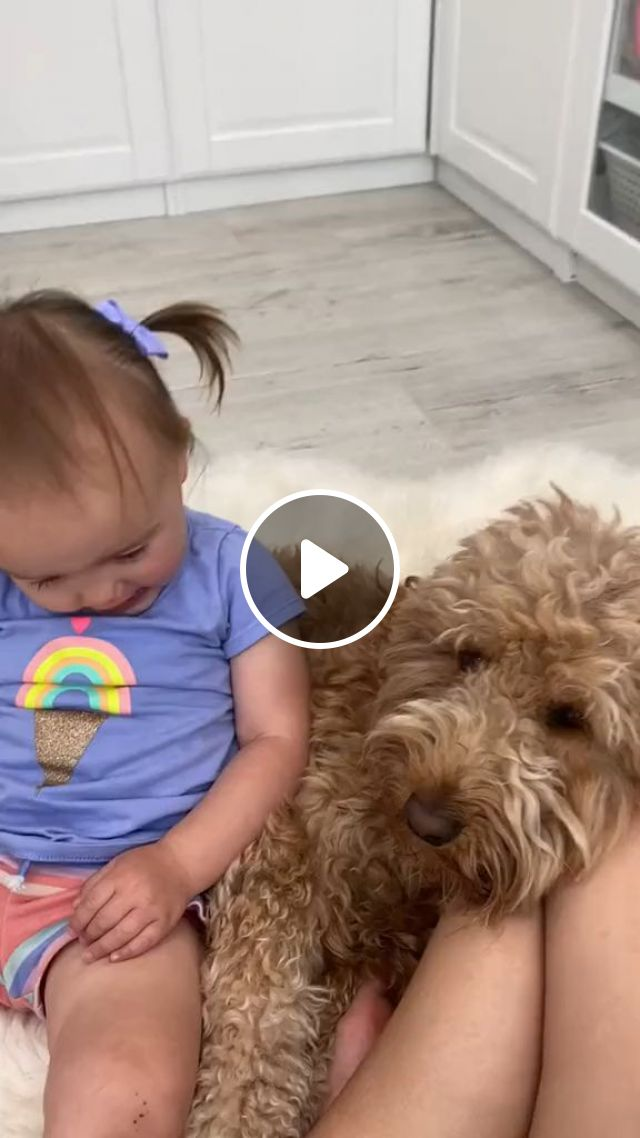 Helping Your Child Grieve The Death Of A Dog - Video & GIFs   Family Life, Death, Pet Death