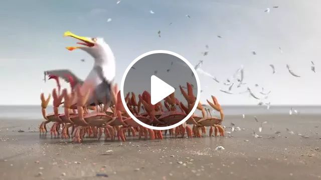 Super Fast Hair Removal Service On The Beach - Video & GIFs | Service, hair removal, super fast, beach
