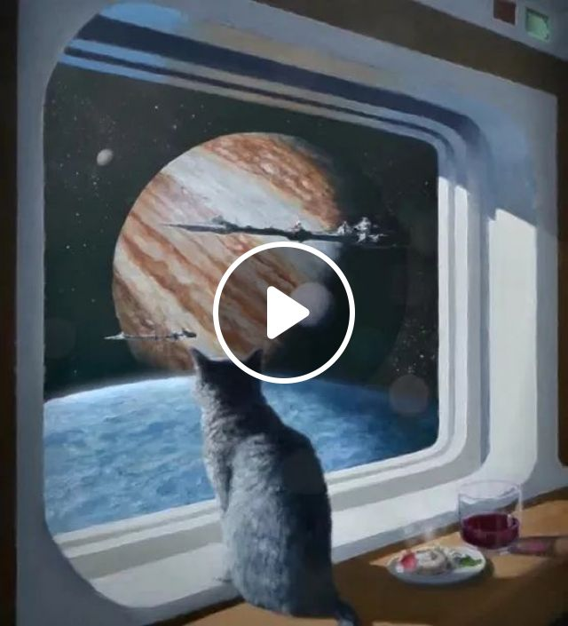 Cat, what do you think about space travel?