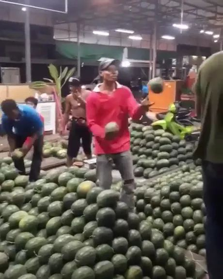 Watermelon is preparing to export to Europe