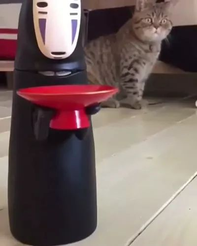 Cat is surprised to see toy working - Video & GIFs   animals,pets,pet care,active toys