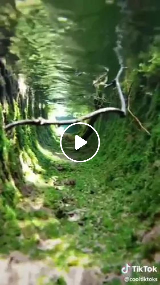 A Place You Can Explore And Travel - Video & GIFs | discover, Japan travel, fresh