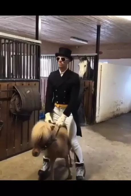 Man of luxurious clothes and a poor horse
