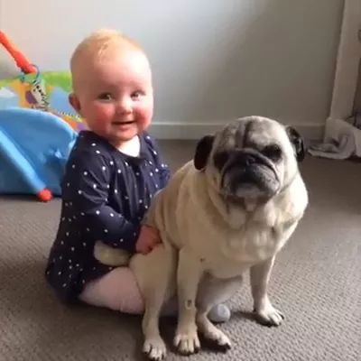 This Puppy and Baby are most adorable
